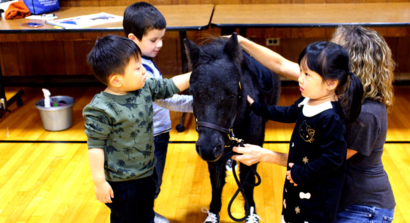 Students petting a pony.